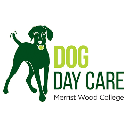 Dog Day Care in Guildford Logo