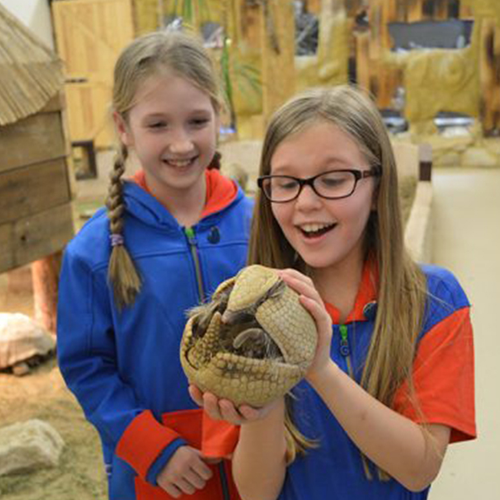 girls holding armadillo