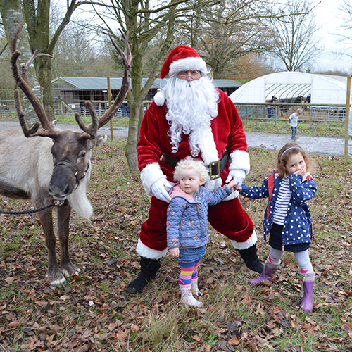 santa-and-kids-with-a-reindeer