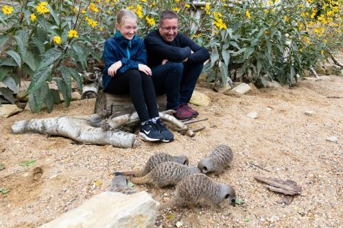 Family with the meerkats
